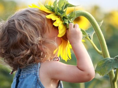Summer Flower Face