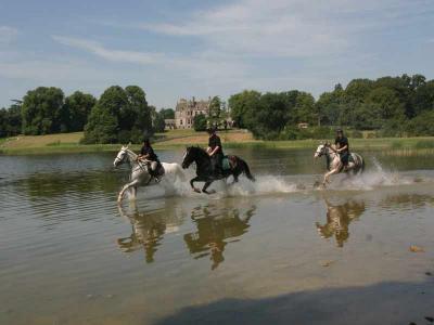 Equestrian Centre 2