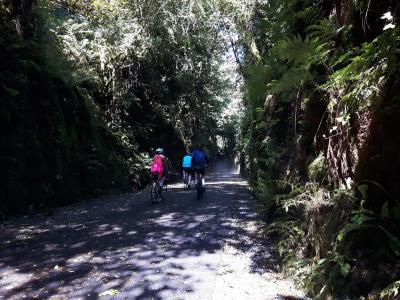 Greenway Cycle 2