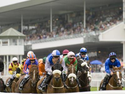 Galway Races 5