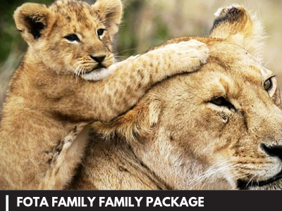 Fota Package