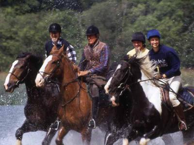 Equestrian Centre 1