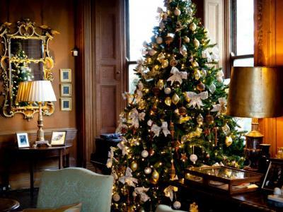 Christmas Tree Drawing Room