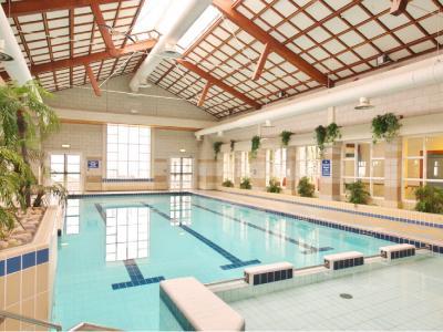 Swimming Pool Connemara
