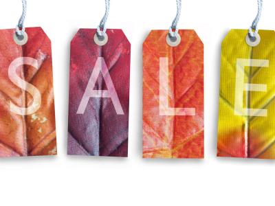 Autumn Sale Flags