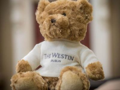 Westin Teddy