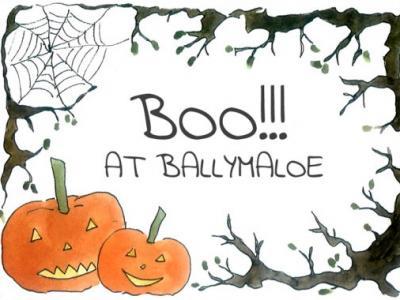 Boo at Ballymaloe