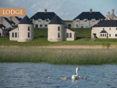 Lodge Swans