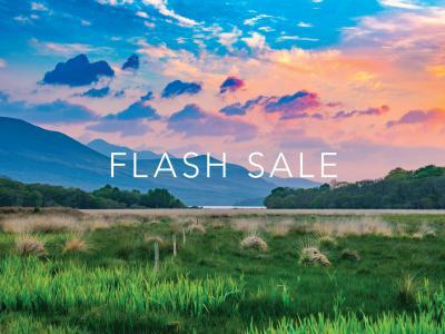 Flash Sale 15pc Summer