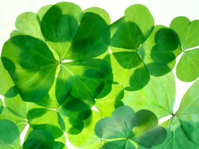 St Patricks Weekend