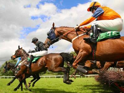 Horse Racing Hurdles