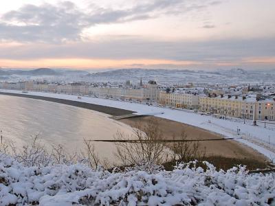Imperial Hotel - Winter Scene