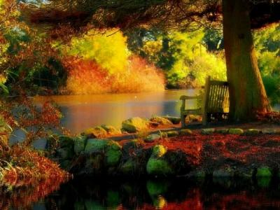 Autumn in Carlow
