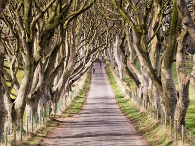 Ballygally Game of Thrones