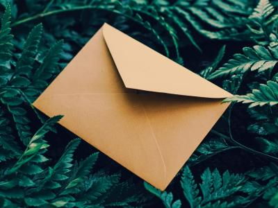 Blank envelope green leaves
