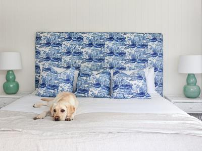 Luxury Suite - Dog Friendly