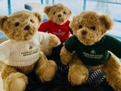 Teddy Bears in Health Spa