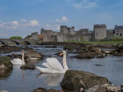 Castles & Swans