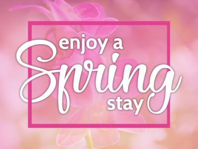 Spring Stay 2018