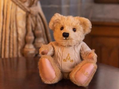 Dara Bear