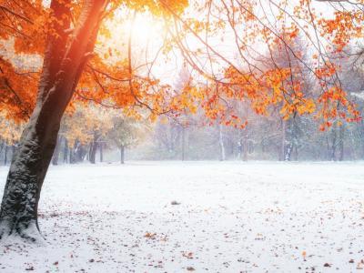 winter 3