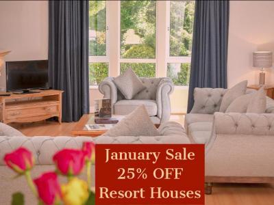 January Sale RH