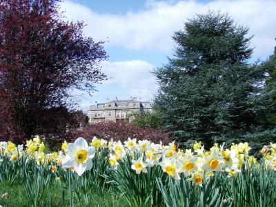 Luton Hoo Spring