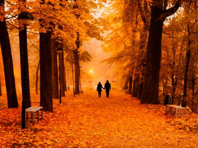 Autumn Campaign Fota