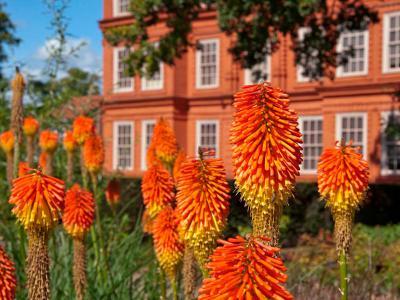 Kew Gardens Break