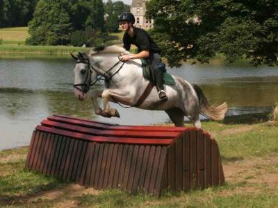 Horse & Rider Jumping