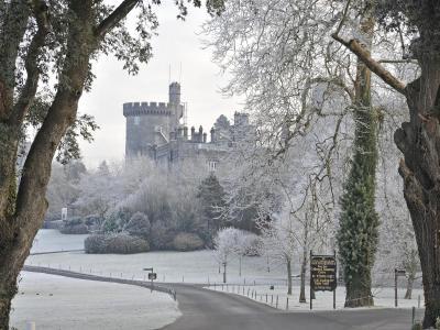 Frosty Snow Exterior
