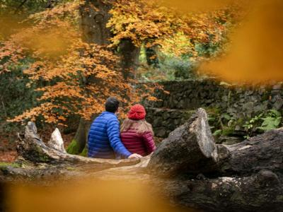 Fall into Tullamore